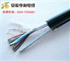 (萍乡计算机电缆)(IA-DJYVRP电缆标准)(冶炼设备)