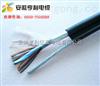 (DJVP3VP3計算機電纜)(石油設備系統)(菏澤)