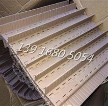 5935挡板型网带5935平格网带